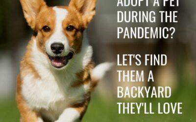 Adopt a Pet?